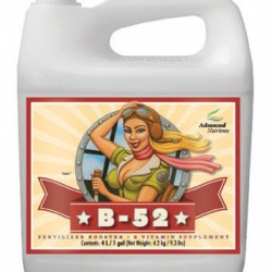 B-52-Fertilizer-Booster-2-1-4-10L