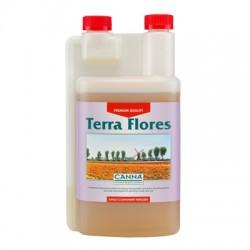 Canna_Terra_Flores_1