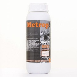 MR-2-Bloom-10-20-40-1L