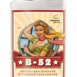 b52 1l