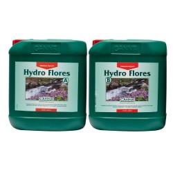 canna hydro flores nagy
