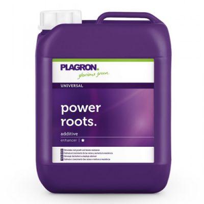 power_roots_5l