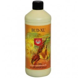 Bud-XL-House-and-Garden-1l