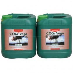 Canna-Cogr-Vega