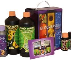 bloombastic_box