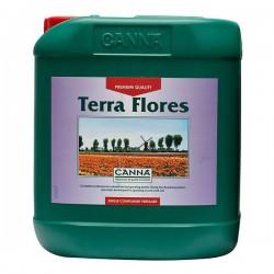 canna-terra-flores nagy