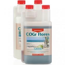 cogr-flores_1