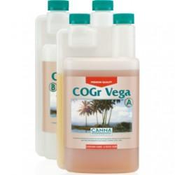 cogr-vega_1