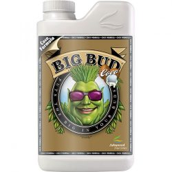 big_bud-coco
